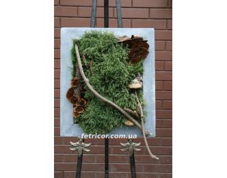 """Картина зі стабілізованим мохом """"Історія лісу"""""""
