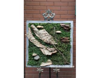"""Картина зі стабілізованого моху """"Норвезький ліс"""""""