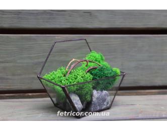 """Флораріум з стабілізованим мохом """"Легкість"""""""