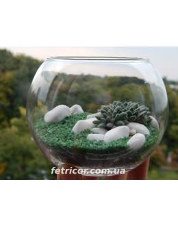 """Флорариум """"Green ball"""""""