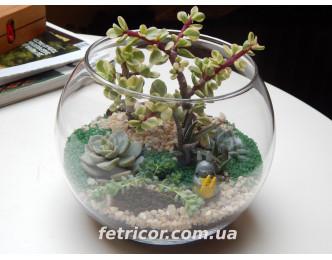 """Флорариум """"Растительный мир"""""""