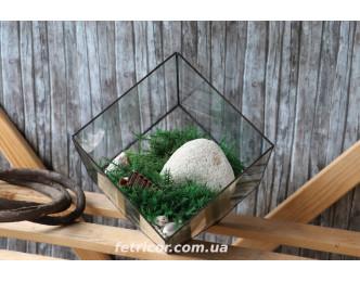 """Флораріум з стабілізованим мохом """"Зелений куб"""""""